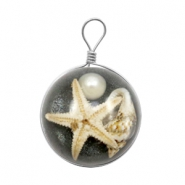 Charms with seastar 20mm Anthracite Black