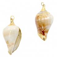 Shell pendant specials Whelks Creamy White-Gold