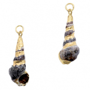 Shell pendant specials Whelks Dark Brown-Gold
