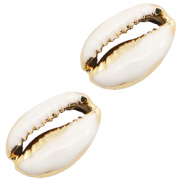 Shell beads specials Cowrie Half White-Gold