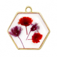 Charms with dried flowers hexagon Gold-Red