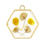Charms with dried flowers hexagon Gold-Yellow