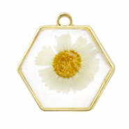 Charms with dried flowers hexagon Gold-White