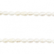 Freshwater pearls rice Natural White