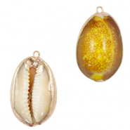 Shell pendant specials Cowrie Yellow Brown-Gold