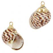 Shell pendant specials Whelks Mixed Brown-Gold