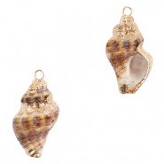 Shell pendants specials Whelks Brown-Gold