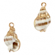 Shell pendants specials Whelks Light Brown-Gold