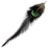 Duo feathers Black-dark green