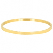 Stainless steel bracelet large Gold