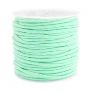 Coloured elastic cord 2.5mm Light turquoise blue
